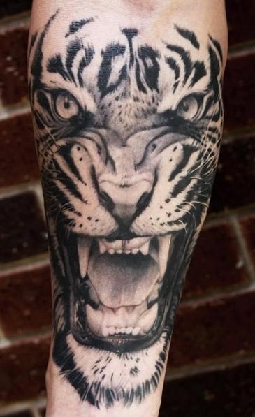 Tatuagens-de-Tigre-28