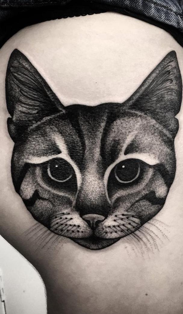 Fotos-de-tatuagens-de-gatos-13