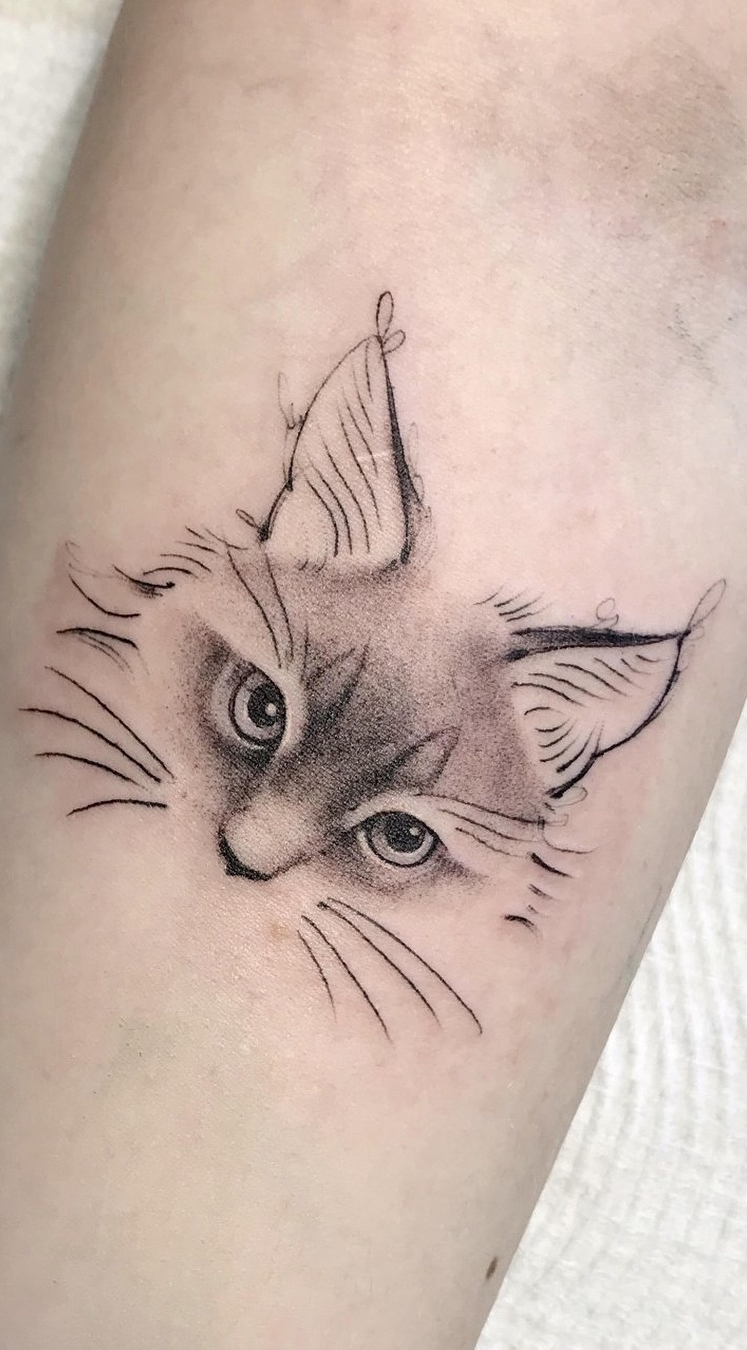 Fotos-de-tatuagens-de-gatos-5