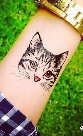 Tatuagens-de-gatos-104