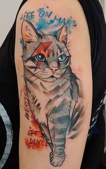 Tatuagens-de-gatos-em-aquarela-10