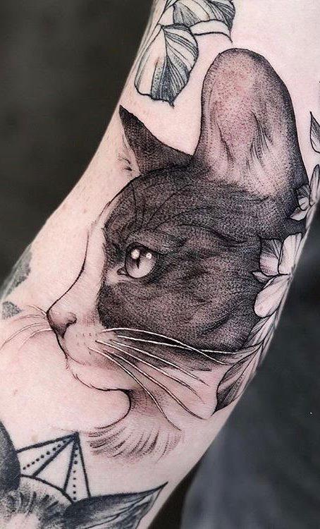tattoo-de-gatos-1
