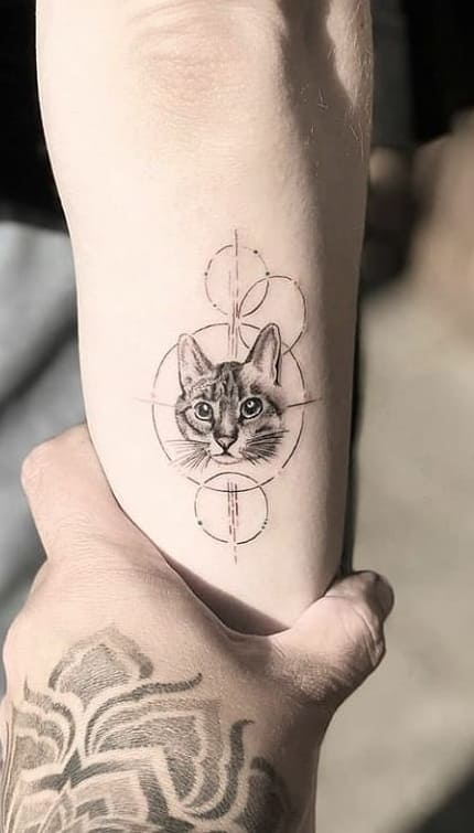 tatuagem-delicada-de-gato